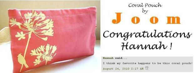 Joom giveaway winner