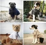 Rover Dog Clothing